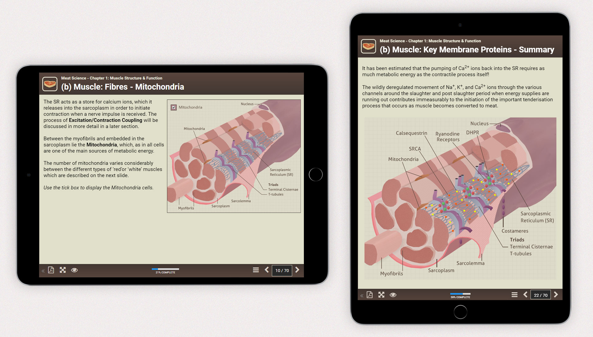 Meat Science iPad